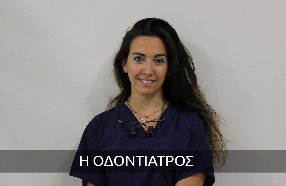 Ελένη Ν. Ζαχαράκη1